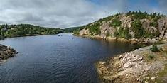 Avondale, Newfoundland and Labrador - Wikipedia