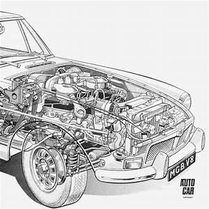 Engine   V8