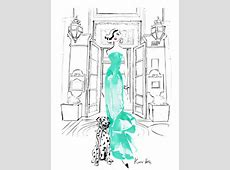 Kerrie Hess the Australian illustrator at the top of the