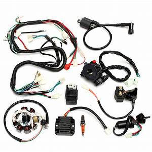 Complete Electrics Wiring Harness For Chinese Dirt Bike