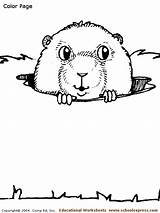 Coloring Gopher Worksheets Animal Activity Homes Gophers Schoolexpress sketch template