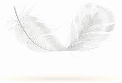 Feather Clip Falling Clipground