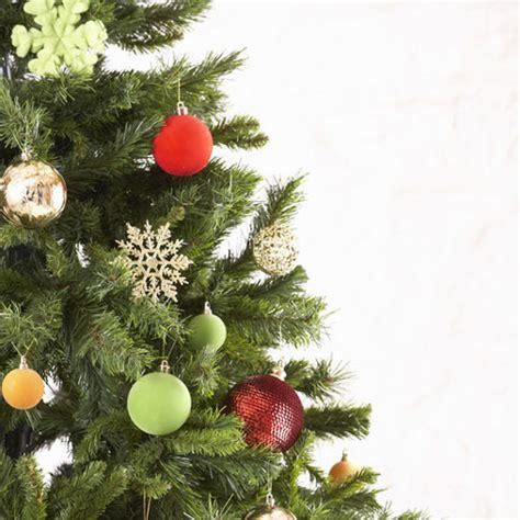 christmas tree cybilla fragrance oil