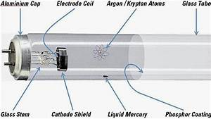 Science Online  Uses Of Fluorescent Lamps And Their Structure