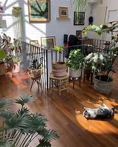 Zimmerpflanzen Für Schlafzimmer : das abw rtsrisiko von einfachen zimmerpflanzen f r indoor ~ A.2002-acura-tl-radio.info Haus und Dekorationen