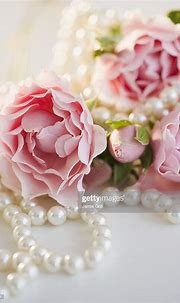 Pearls And Pink Roses High-Res Stock Photo - Getty Images