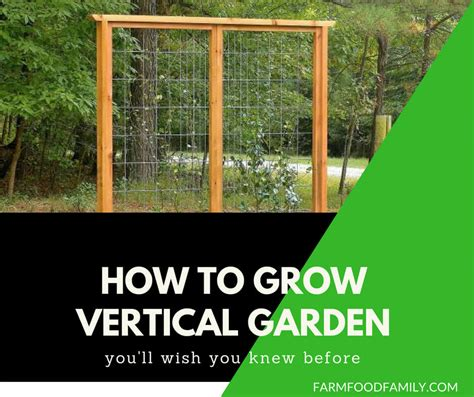 Vertical Gardens How To Build by Vertical Garden Diy How To Build Your Own Vertical Garden