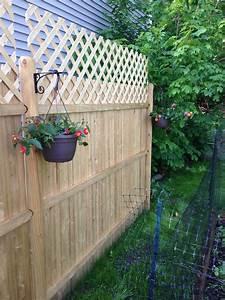 Lattice, Show, You, Our, Fence, U0026, 39, S, New, Floral, Arrangement