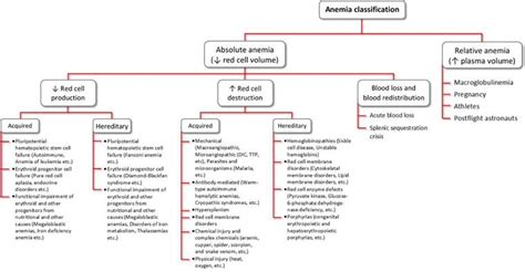 Laboratory Approach To Anemia