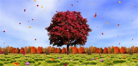 Android Hd Autumn Wallpapers by Wallpaper Autumn 29 Images On Genchi Info