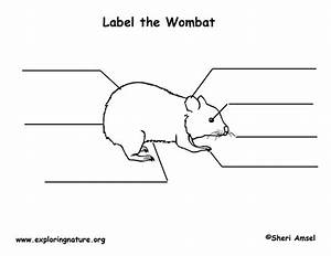 Wombat Labeling Page