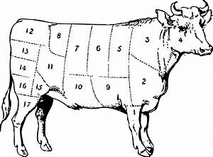 Know Your Cuts Of Beef