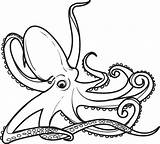Coloring Octopus Printable Outline Realistic Drawing Adults Animals Colouring Animal Funny Adult Getdrawings Craft Colors Clipartmag Mpmschoolsupplies sketch template