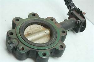 Center Line 200 4 U0026quot  Dn100 Stainless Steel Butterfly Valve