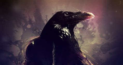 crow arts wallpapers backgrounds