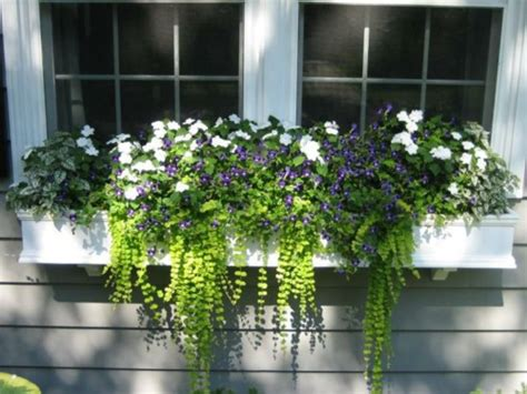 Outside Window Sill Planter by Flower Boxes On The Windowsill Outside Safe And