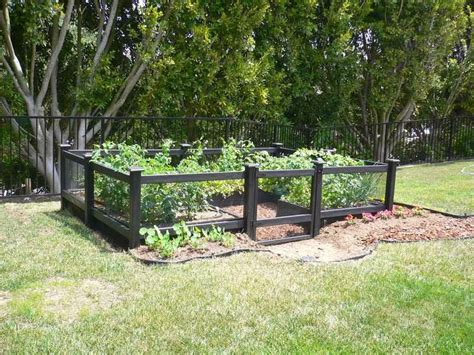 small backyard fence ideas fence idea for small dog ayanahouse