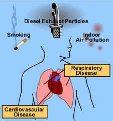 lungs toxins  avoid images  tips  lung health