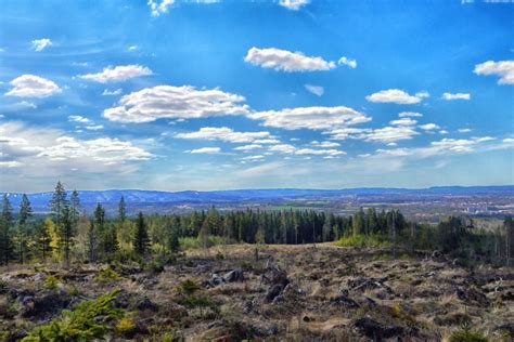 Forest, Sky, Rocks, Landscape, Mountains
