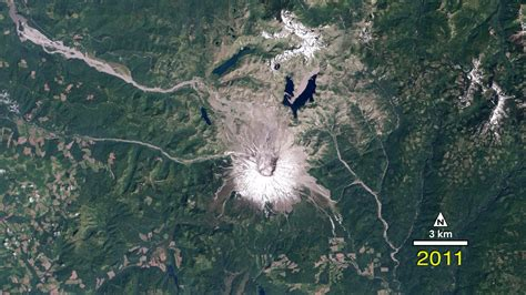 gms forest recovering from mount st helens eruption