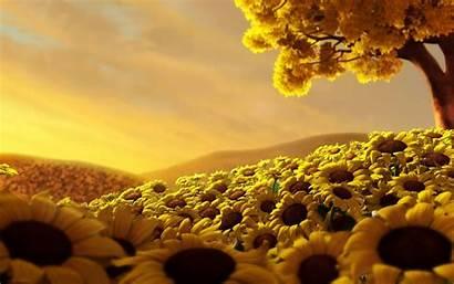 Amazing Wallpapers 3d Desktop Sun Nature Yellow