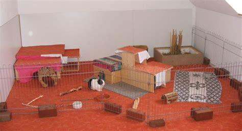 kaninchen in der wohnung kaninchen info wohnungsgehege