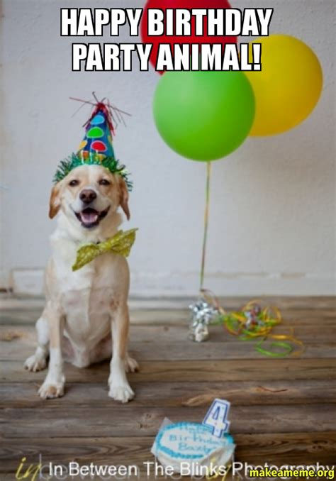 Birthday Animal Meme - party animal images pictures photos icons and wallpapers ravepad the place to rave about