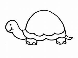 Turtle outline to | Tattoos | Pinterest | Turtle, Tattoo ...