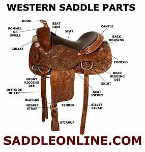 The Parts Of A Western Saddle