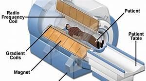 Magnetic Resonance Imaging  Mri  Scan Test