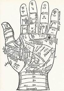 Zodiac Signs In The Hand  Combining Astrology With