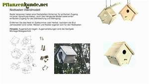 Nistkasten Rotkehlchen Bauanleitung : nistkasten bauanleitung youtube ~ A.2002-acura-tl-radio.info Haus und Dekorationen