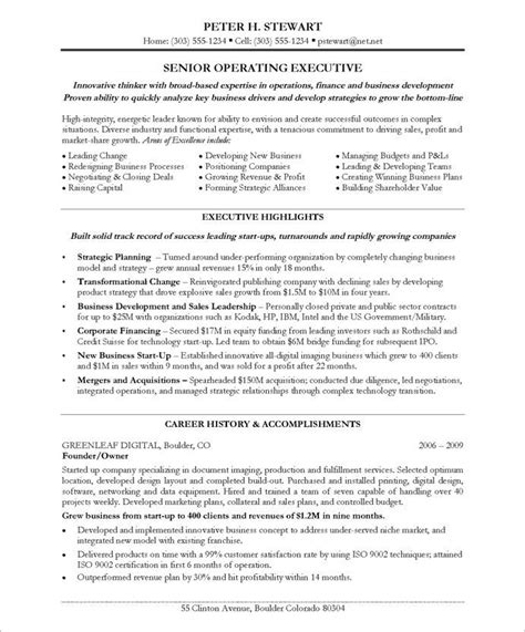 11 best executive resume sles images on