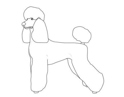 kostenlose malvorlage hunde pudel zum ausmalen