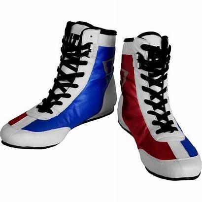 Boxing Shoes Flash Usa Title Money Metallic