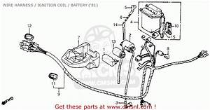 Honda Nc50 Express 1981  B  Usa Wire Harness    Ignition