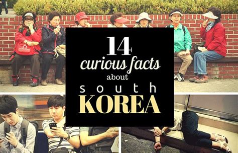 Curious  Ee  Facts Ee   About South Korea La Vida Nomade