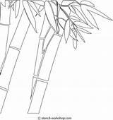 Bamboo Coloring Stencil Stencils Panda 86kb 612px sketch template