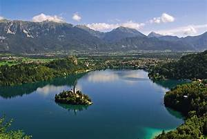 Iwc Scientific Committee Meets In Bled