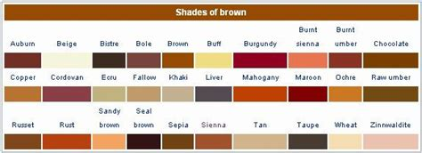 different colors of brown shades of brown the craft stylists copper