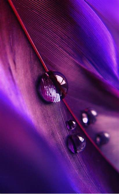 Iphone Touch Ipad Retina Ipod Purple Feather
