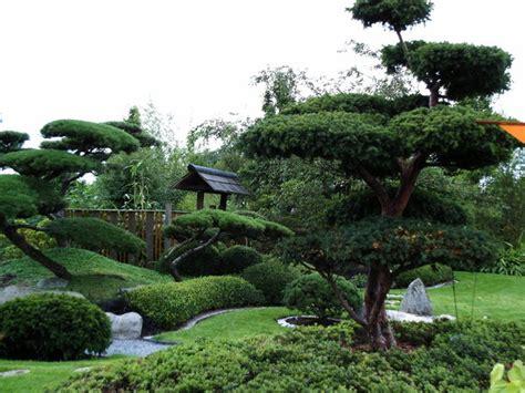 Kiefern Im Garten by Bild 1 Aus Beitrag Park Der G 228 Rten In Bad Zwischenahn