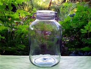 Einmachglas 5 Liter : einweckglas 5 liter natural kefir drinks ~ Orissabook.com Haus und Dekorationen