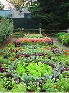 Fall Gardening Tips How To Prepare Your Garden For Fall