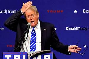 Donald Trump shows off his infamous hair at a campaign ...