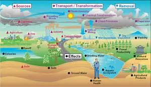 pollution essay thermal pollution essay
