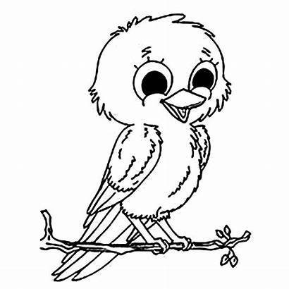 Coloring Birds Pages Bird Children Printable Colouring