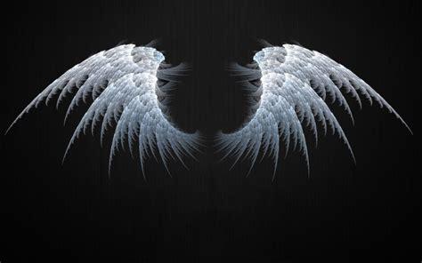 Angel Wings Fractal Wallpapers  Angel Wings Fractal Stock