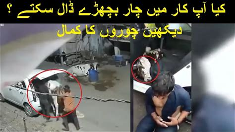 Eid-Ul-Adha Qurbani 2020 | Save Your Animals From Stealing ...