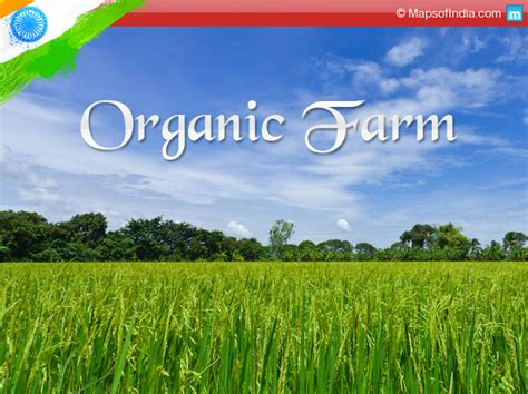 concept cuisine organic farming in india viable option or not my india